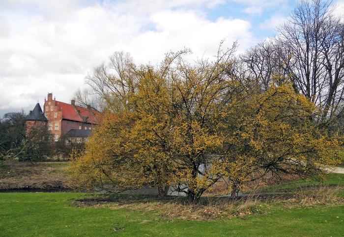 Klettergerüst Schlosspark Herten : Schlosspark herten 2017 02 28 im sonnenschein ist es viel schöner au2026
